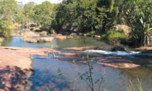 madagascar-parc-national-d-andohahela-parc-d-andohahela